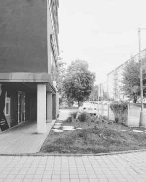 concepthouse04